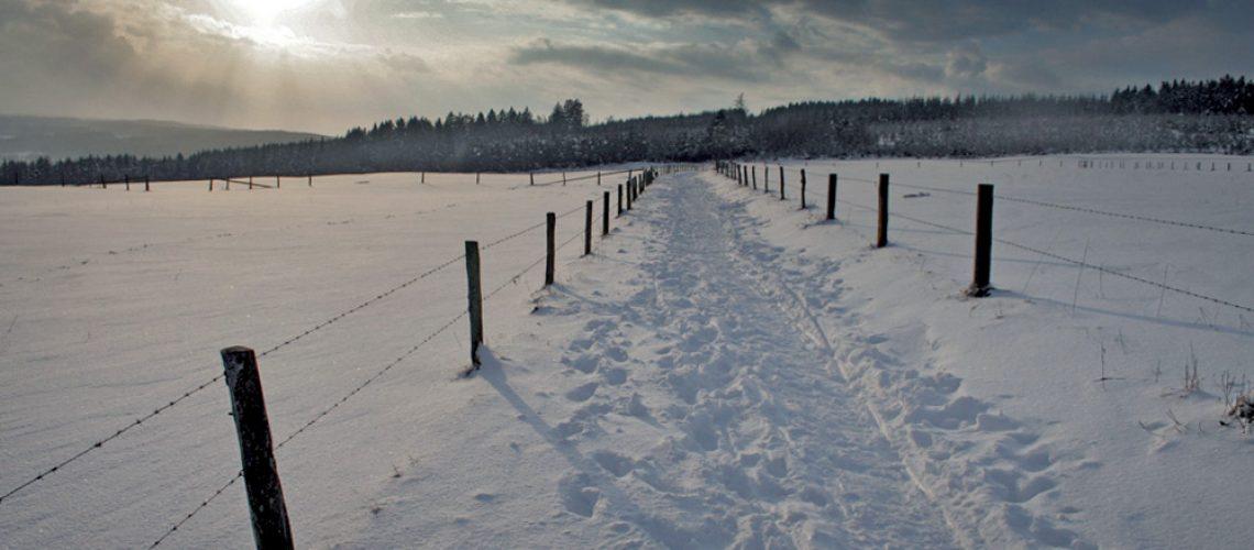 snow-1383181.jpg